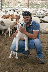 Agriturismo Siracusa: Paolo si prende cura del gregge di pecore dell'azienda agricola Italia