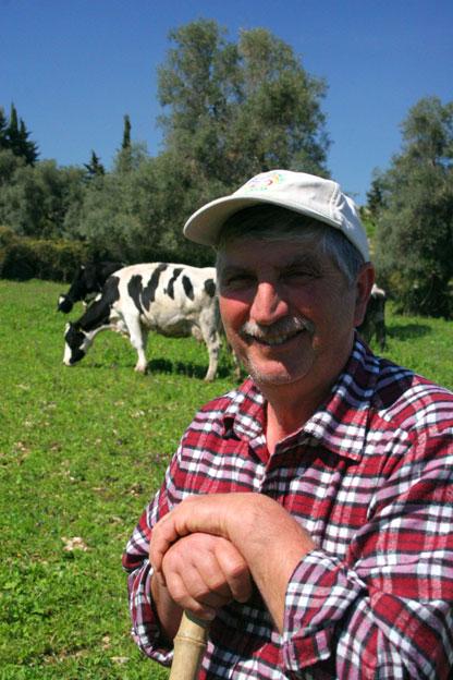 Agriturismo Siracusa: Nello Italia porta al pascolo la mandria di vacche frisone dell'allevamento dell'azienda agricola italia